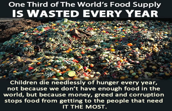 More Than 30 Percent of The World's Food Supply Is Wasted Every Year