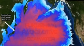 Video: Fukushima Death Plumes Hitting Canada? Total Media Blackout