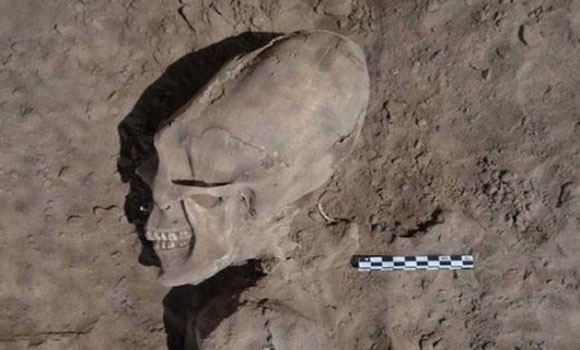 13 Nephilim Skulls Found In Mexico