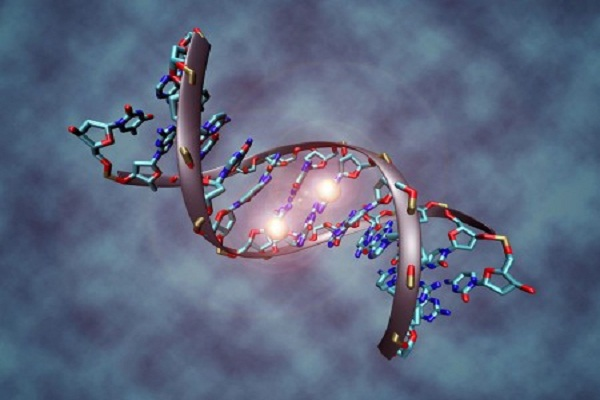 The Government Plans To Track Us And Those We Are Related To Using Our DNA