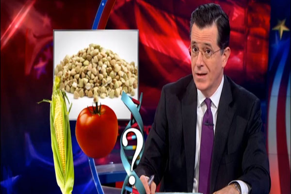 Video Colbert On Washington GMO Labeling 'Questioning What's On Your Plate Is Un-American'