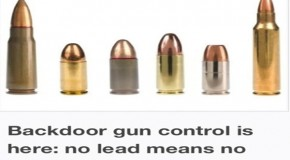 Backdoor gun control is here: no lead means no bullets