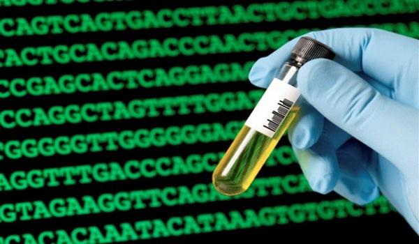 Scientists discover second, secret DNA code
