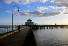 Tourist walks off pier while browsing on Facebook