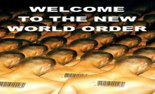 Video Scary New World Order Plans For 2014