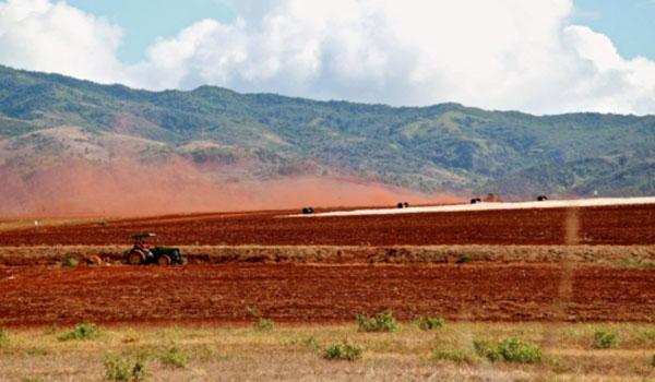 Big Biotech Sues Little Island of Kaua'i Over GMO Law