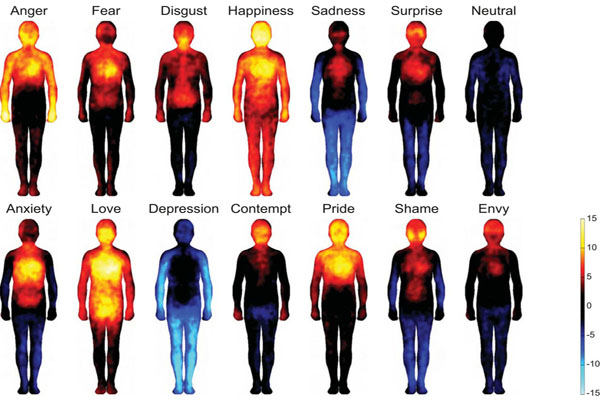 Body Atlas Reveals Where We Feel Happiness and Shame