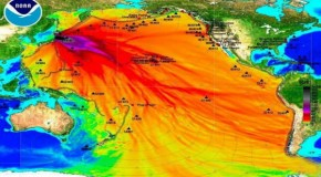 Discovery Channel: Stop Worrying About Fukushima Radiation!