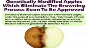 Genetically Modified Apples Which Eliminate The Browning Process Soon To Be Approved