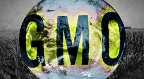 Leaked! Food Lobby Threatens to Sue Any State that Tries to Label GMOs