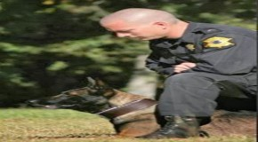 Man Sentenced to 35 Years in Prison For Shooting Police Dog