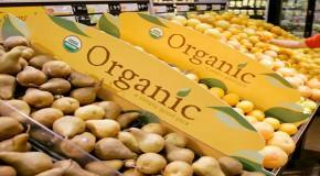 Organic food shortage hits US