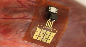 Scientists reveal Human-Powered Battery For RFID Implantable Chips