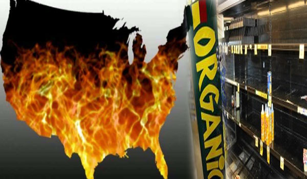 U.S. Cattle Herd Is At A 61 Year Low And Organic Food Shortages Are Being Reported All Over America