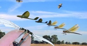 Dragonfly World's Smallest Autonomous Drone Takes Flight