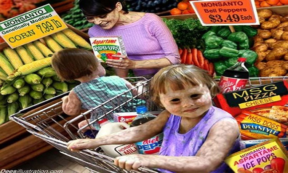 'GMO products cause cancer and obesity' - food safety expert