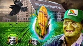 Monsanto's Roundup: new deadly scam exposed