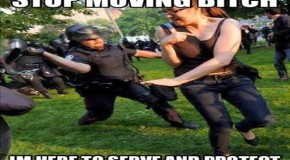 Police State Violence Meme and the Story Behind It