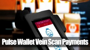 'Pulse Wallet' Hand Scan Payment – Mark Of The Beast?