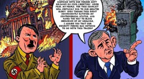 THE REICHSTAG FIRE WAS NOT A 'FALSE FLAG'!