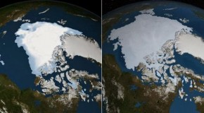 The Government KNOWS That Global Cooling Will Kill Millions But Still Refuses To Admit It Exists
