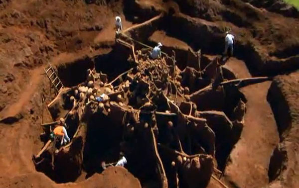 Video  Giant Ant Colony Excavated, You won't believe what they build underground