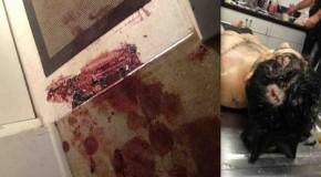CounterPunch Exclusive Investigation: Did the FBI snuff a Boston Marathon bombing witness?