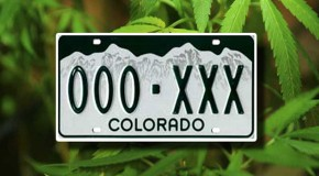Police State…70 Year Old Man Arrested for Having Colorado Plates