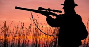 State May Ban Common Hunting Rifles