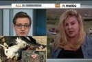 Bundy supporter OWNS Chris Hayes on MSNBC: 'We will not allow governance by gunpoint, ever'