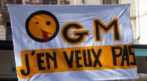 Effective Immediately: France Bans All GMO Cultivation