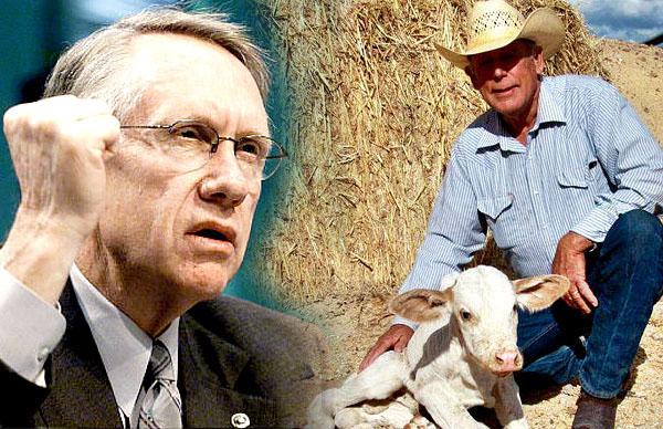 "Harry Reid Calls Cliven Bundy Supporters ""Domestic Terrorists"""