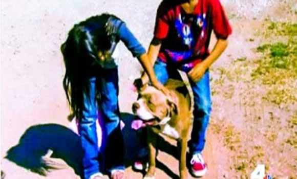 Instant Karma 'Cop Shoots Himself Trying To Kill A Dog'