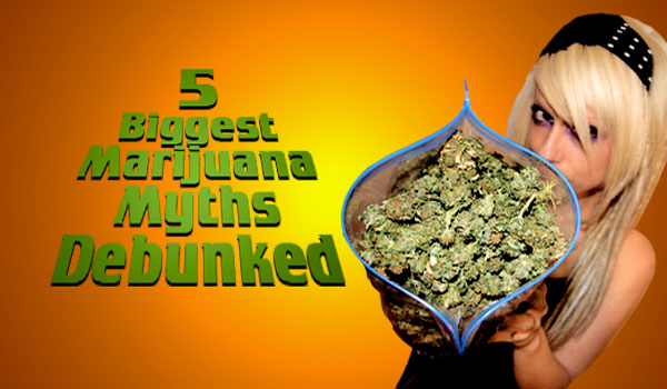 Debunking the 5 Biggest Myths About Cannabis