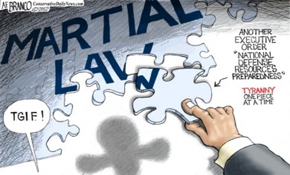 Martial Law in the Homeland Security Society