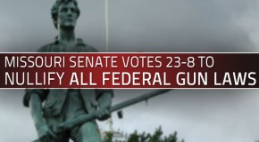 Missouri Senate votes to nullify federal gun laws and regulations, 23-8