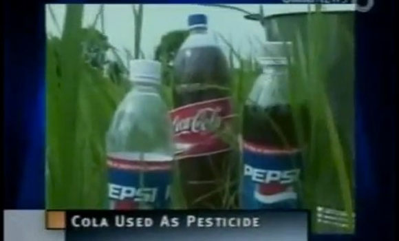 Pepsi and Coca-Cola Used As Pesticide In India Because They're Cheap and Get The Job Done