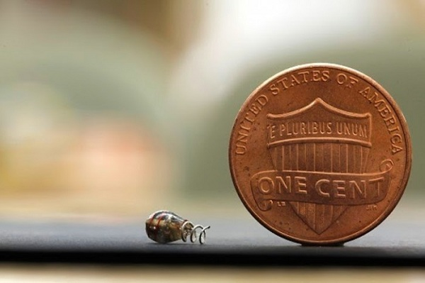 Wireless Microchip Implant Set For Human Trials