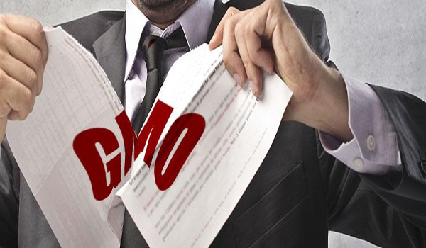 California rejects GMO labeling