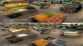This Is What Your Grocery Store Would Look Like Without Bees