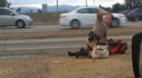 Caught On Camera: CHP Officer Beats The Crap Out of a Woman Beside a Busy Road