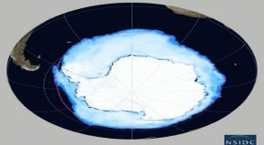 Global warming is creating MORE ice: Antarctic levels reach a record high because of climate change, scientists claim