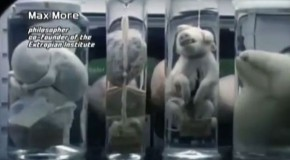 Horrifying Human Animal DNA Experiments – Transhumanism & Hybrids – Mind Blowing Video And Images