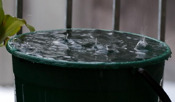 It Begins… US Citizen Goes to Jail for Collecting Rain Water