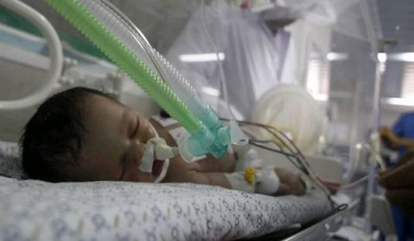 Palestinian baby born after mother's death dies