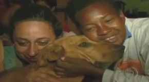 Video: Junkyard Dog Generously Shares Food With Her Animal Friends Every Night