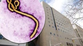 'Ebola Virus' hits 'New York City'