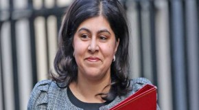 Baroness Warsi resigns over Gaza conflict saying she 'can no longer support Government policy'