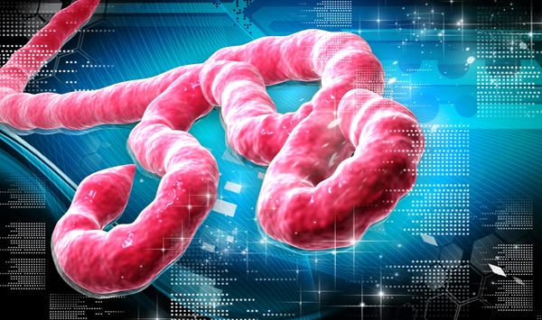 Cura para Ebola eles não querem que você saiba Sobre!