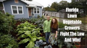 Florida Couple Wins Fight For Front Yard Vegetable Garden!